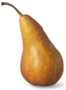 Come una pera matura